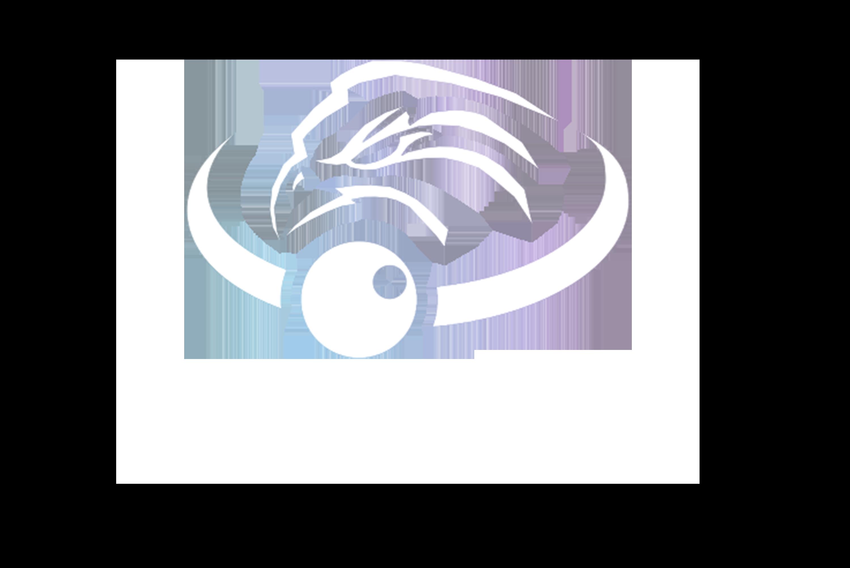 VAISTO